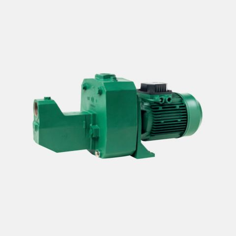 DAB 1.5HP 220V Shallow Well Pump
